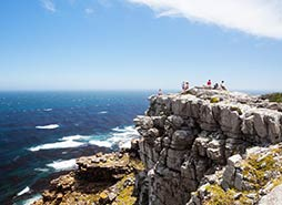 Cape Point Tour Highlights - Cape Point, South Africa