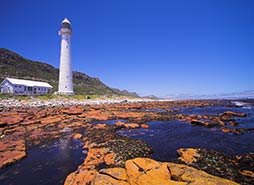 Cape Point Tour Highlights - Slanghoek Lighthouse
