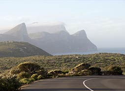 Cape Point Tour Highlights - Cape of Good Hope